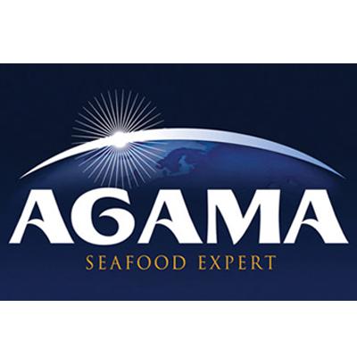 Компания АГАМА